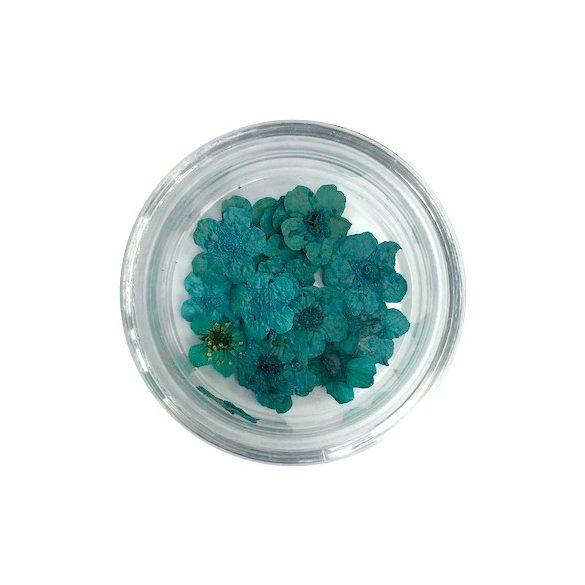 Getrocknete Blumen - Blau